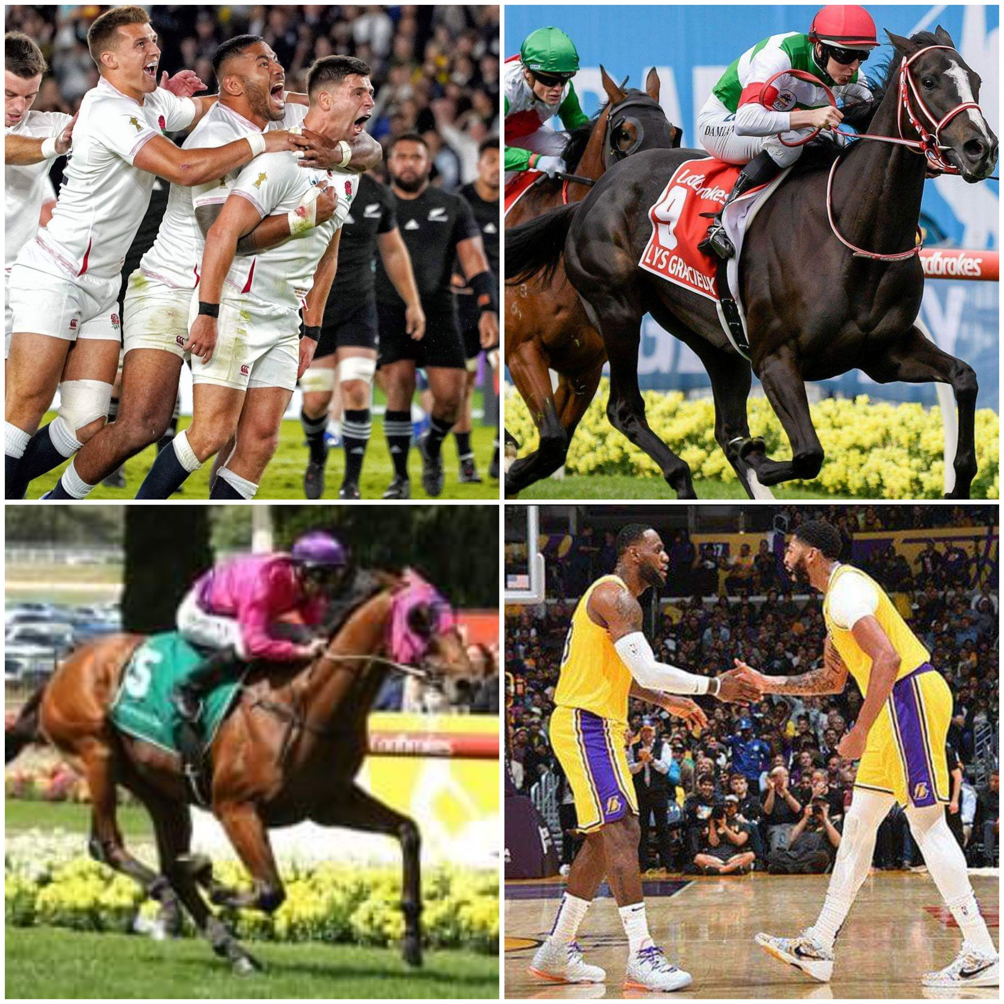 England Lakers Horses